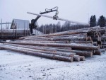 23) pole truck discharging-w1366-h1366