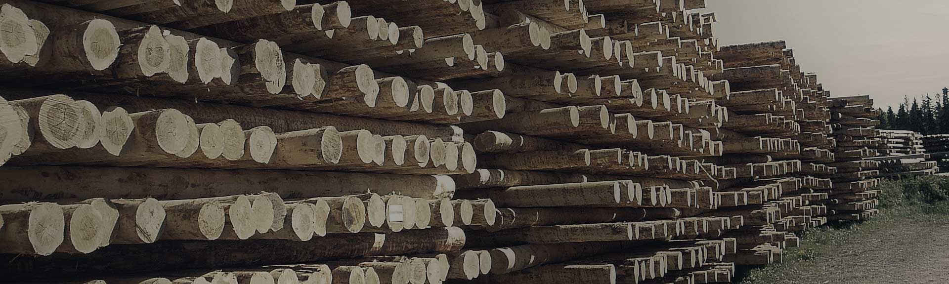 High Quality Wooden Utility Poles!