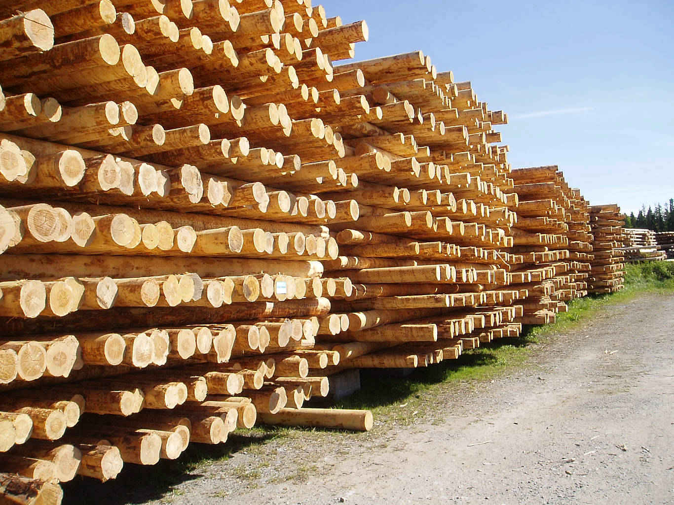 Stacked H Frame Electrical Poles : Wooden utility poles fidetron oy