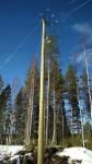 31) wolmanit pole-w1366-h1366